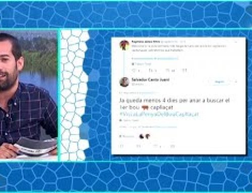 Dani Sainz: repàs al Twitter ebrenc