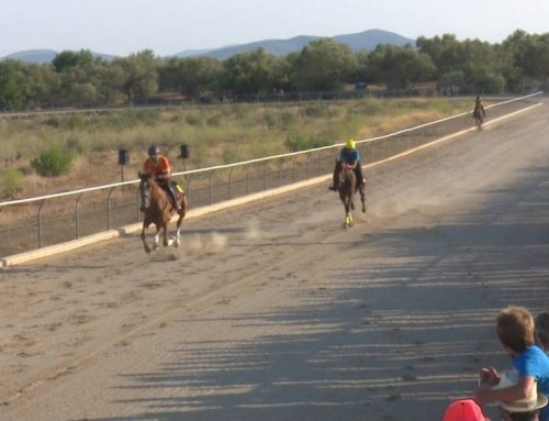 La Sénia, l'únic poble ebrenc en celebrar curses de cavalls