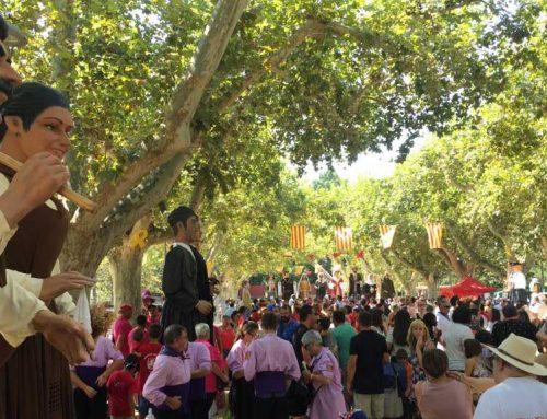 Èxit rotund de participació en la trobada de Gegants de Tortosa