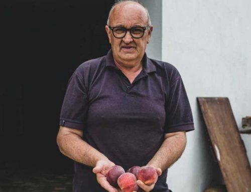 Tivissa assenyala el camí de l'agricultura ecològica a l'Ebre