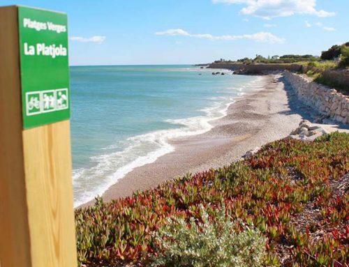 La Platjola d'Alcanar fa millores per ser de les millors de la costa per banyar-se amb gossos