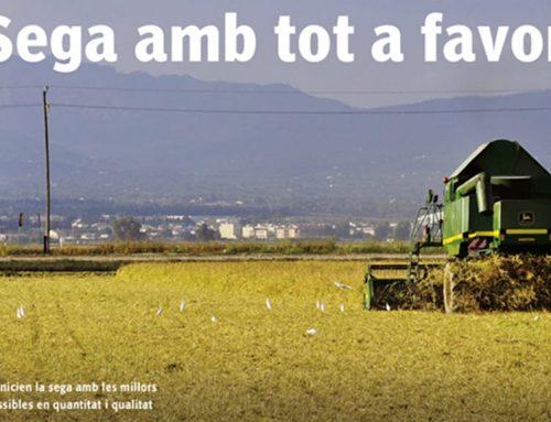 El setmanari L'EBRE destaca en portada les bones perspectives de la campanya de la sega de l'arròs