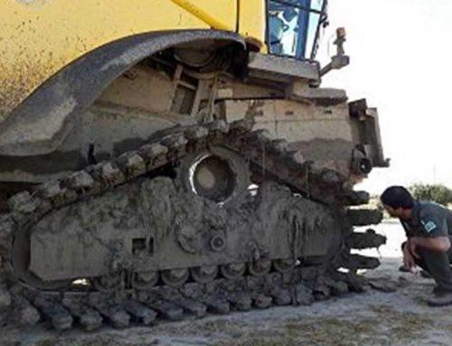 En marxa el protocol de vigilància per la lluita contra el cargol poma durant la sega de l'arròs al Delta de l'Ebre