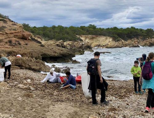 Recullen mitja tona de residus de les platges de l'Ametlla de Mar