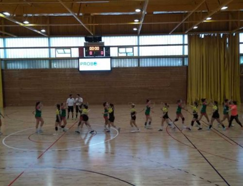 S'ajorna el partit de l'Amposta-Lagrama contra el Puchi d'Eivissa