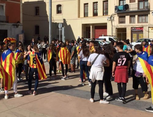 Les Terres de l'Ebre, la demarcació catalana amb el seguiment més alt de la vaga d'estudiants