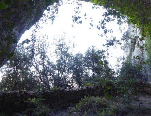 El Govern delimita l'entorn de protecció de les pintures rupestres de Tivissa