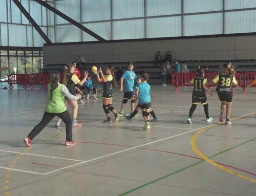Catorze equips es donen cita en la trobada de Minihandbol a Tortosa