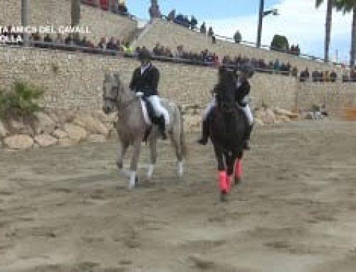 V Festa de l'Associació Amics del Cavall de L'Ampolla