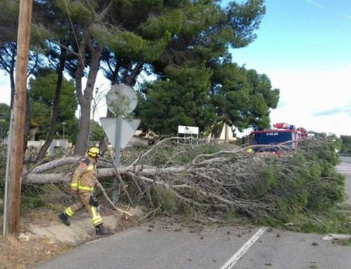 Protecció Civil desactiva l'alerta del pla VENTCAT per la disminució del vent i les incidències