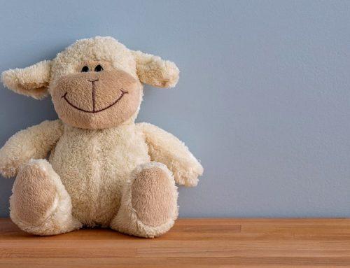 Iniciativa solidària del Conservatori de Música de Tortosa per recollir joguines noves