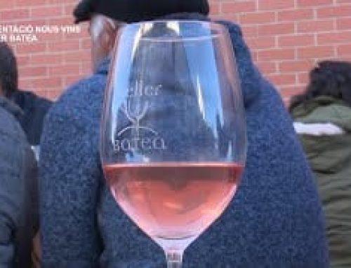 Presentació dels nous vins al Celler Batea