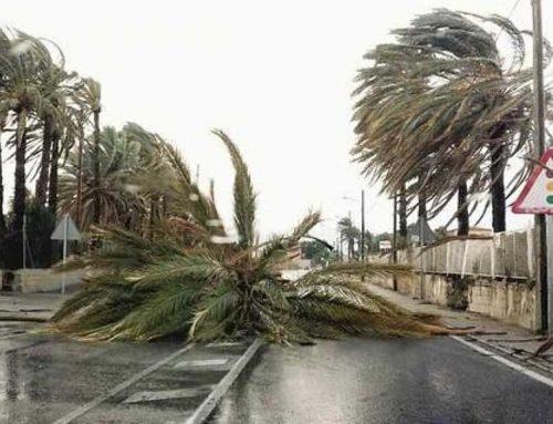 Protecció Civil activa l'alerta del pla VENTCAT per l'episodi de fort vent
