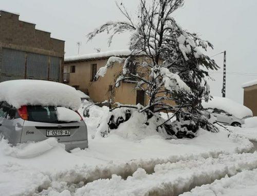 La nevada a Arnes en 15 imatges