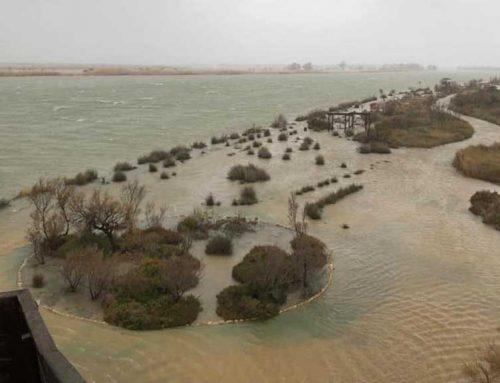 Tres desallotjats a Deltebre a causa del temporal Gloria