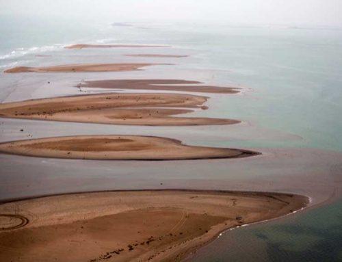 Ràdio 3 dedica el programa 'Mediterráneo' a explicar la crisi del delta de l'Ebre a Espanya