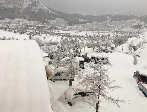 Horta de Sant Joan i Ulldecona acumulen més de 200 litres de precipitació des de diumenge