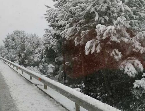 Gairebé 1.000 abonats a Endesa d'Horta de Sant Joan estan sense llum