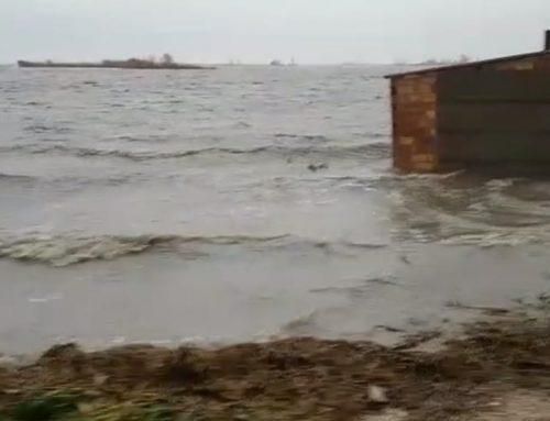 El mar inunda una tercera part dels arrossars de l'hemidelta esquerre de l'Ebre i tota l'illa de Buda