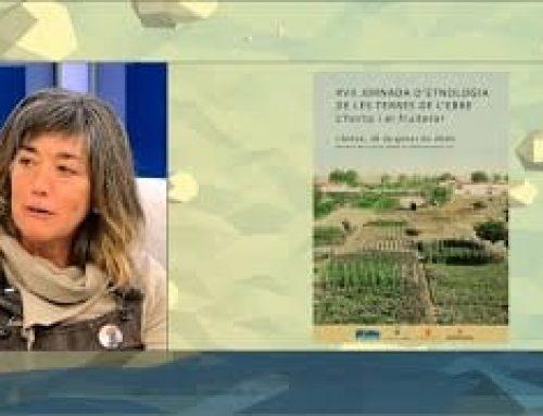 L'Estret de Magallanes: us convidem a la Jornada d'Etnologia