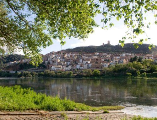 L'Ajuntament d'Ascó impulsa la formació en diferents àmbits