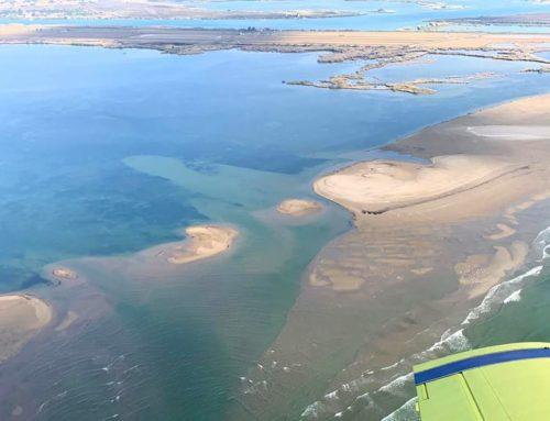 Junts per Catalunya reclama al Senat actuacions urgents per al delta de l'Ebre