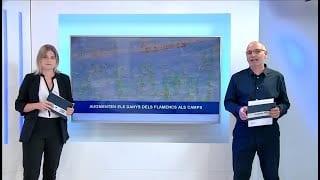 L'Ebre Notícies Dimecres 1 de Juny del 2020