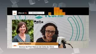 L'Entrevista a Nati Franch