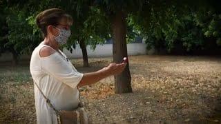 Amb 70 anys té tres mòbils per jugar a Pokémon Go i és temuda per tots els joves