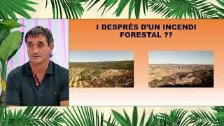 L'Illa dels Flamencs amb la Campanya de Prevenció d'Incendis