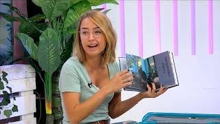 Recomanacions literàries a l'Illa dels Flamencs
