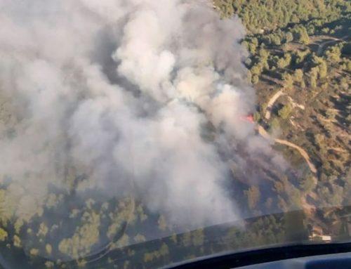 Declarat un incendi a la zona de Fullola, prop de la Bassa de les Collades, al terme municipal de Tortosa