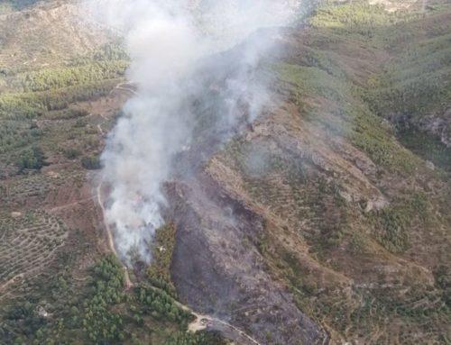 Els Bombers estabilitzen l'incendi forestal de Tivissa que ha cremat 8 hectàrees de vegetació forestal