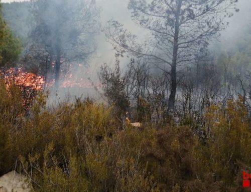 Un incendi crema 3.800 m2 de vegetació forestal al barranc del Pont Trencat del Perelló