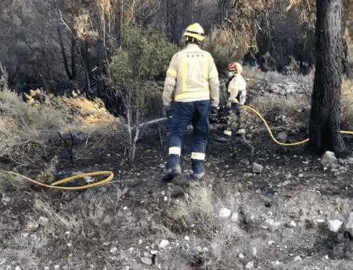 L'incendi de Tivissa s'ha originat per una negligència en una crema de restes vegetals