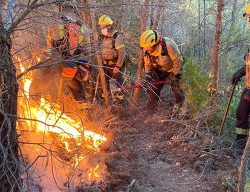 Els Bombers de la Generalitat donen per finalitzada la campanya forestal amb l'extinció de 314 incendis de vegetació a les Terres de l'Ebre