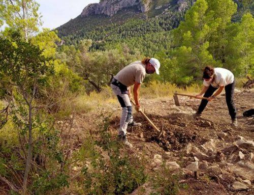 Els arqueòlegs de la URV excaven el jaciment dels Malladarets a Alfara de Carles i en destaquen la grandària
