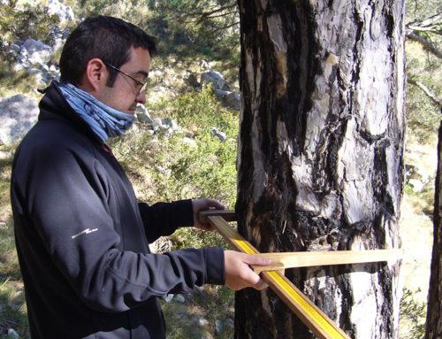 El COPATE organitzarà una jornada sobre medi ambient i biosfera i convocarà un premi  en memòria de Climent Ferré