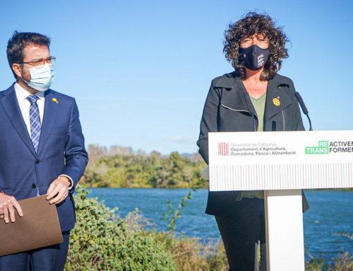 La Generalitat vol millorar l'aportació d'aigua dolça a badies i llacunes del delta de l'Ebre amb una taula de gestió