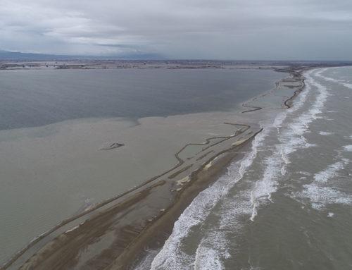 La Taula de Consens adverteix de 'la situació límit' que viu el Delta després dels danys provocats per l'últim temporal