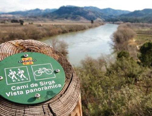 La Ribera d'Ebre destina 300.000 euros a obres de consolidació i senyalització del Camí de Sirga