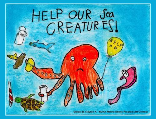 El Parc Natural del Delta de l'Ebre organitza el primer concurs de dibuix sobre brossa marina