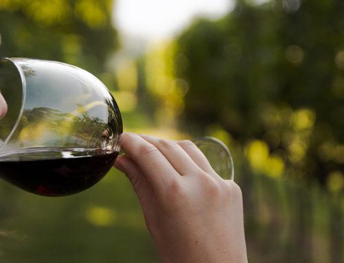El món del vi celebra el Dia Internacional de la Dona Emprenedora