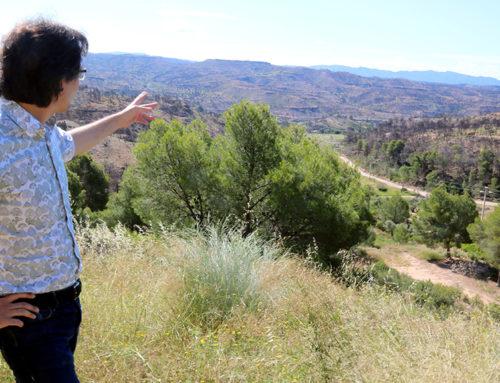 Reforesten la finca de l'ermita del Remei de Flix, afectada per l'incendi de juny 2019
