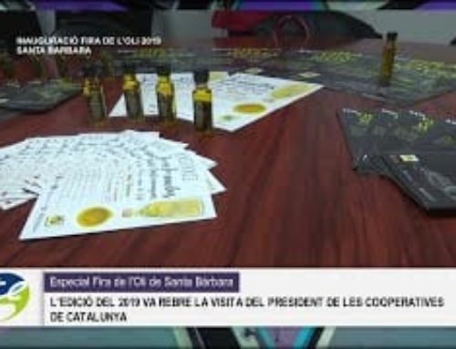La Calaixera: Especial Fira de l'Oli Santa Bàrbara