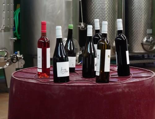 Els set vins de l'Escola Agrària de Gandesa obtenen puntuacions excel·lents a la Guia de Vins de Catalunya 2021