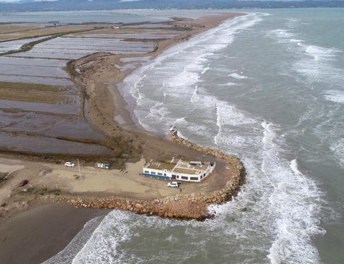 El PSC reclama al Govern que destini els 6 milions d'euros inclosos al pressupost de 2020 per pal·liar els efectes de la regressió al Delta