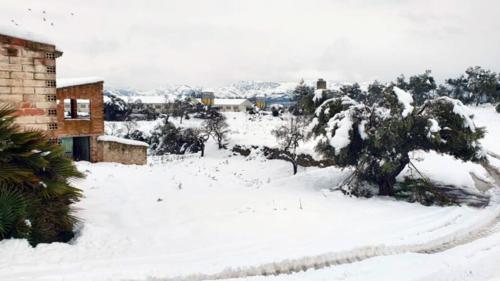 granja nevada unió de pagesos ramaders