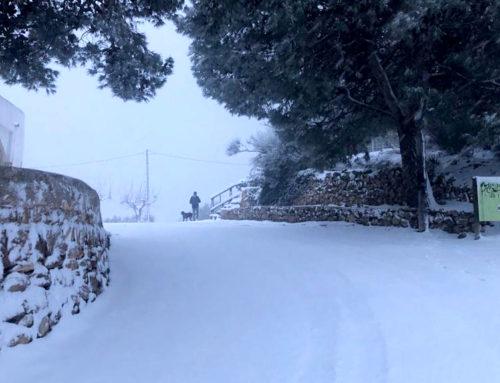 Tortosa talla la carretera de la Simpàtica a partir de Mig Camí per acumulació de neu