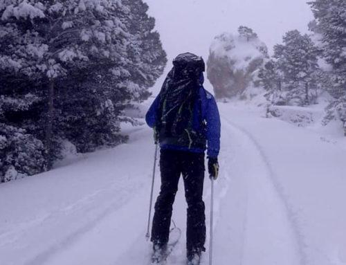 L'estació meteorològica del Parc Natural dels Ports ha registrat un gruix 62 centímetres de neu
